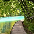 Beautiful Lakes - Plitvice by Billboeing