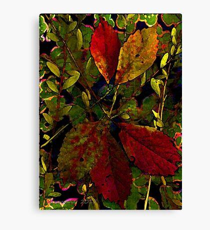 Autumn Gifts... Canvas Print