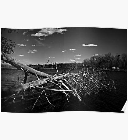 Obitus - Scales Lake, Indiana Poster
