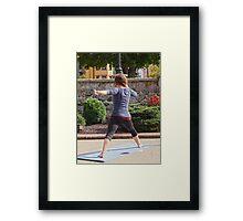 Instructor Framed Print