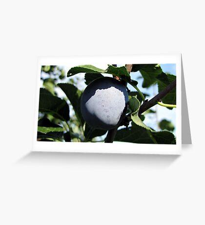 In Shadow of Leaf Greeting Card