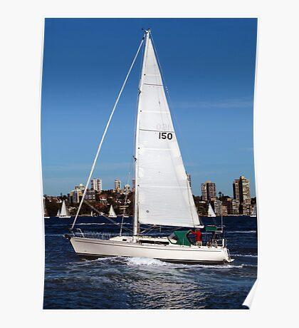 Sailing on Sydney Harbour Poster