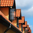 Roof tops by Heather Thorsen