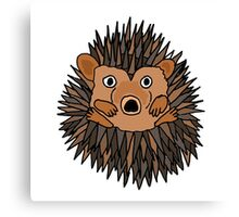 Funky Artistic Baby Porcupine Canvas Print