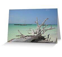 Zanzibar Driftwood Greeting Card