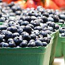 Blueberries by Rae Tucker