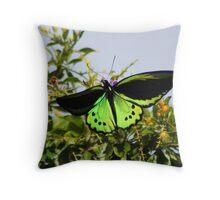 Cairns birdwing Throw Pillow