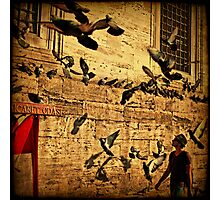 Grounded Pigeon Photographic Print