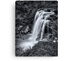 Sydney waterfalls - Hunts Creek #4 Canvas Print