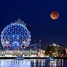 Bad Moon Rising by John Poon