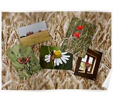 Countryside Collage Poster