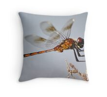 Dragonfly with a Little Girl's Face Throw Pillow