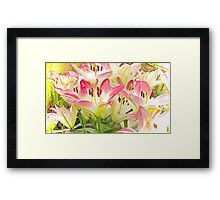 The Lily Patch Framed Print