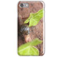 Mr. Snail iPhone Case/Skin