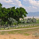 Ranch Fence by Robert  Miner