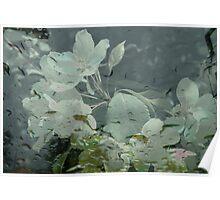 Apple Blossoms 'n' Raindrops Poster