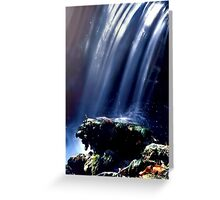 Fall Splash Greeting Card