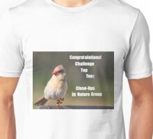 Top Ten Banner Challenge Unisex T-Shirt