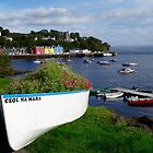 Tobermory, Isle of Mull Scotland by youmeus
