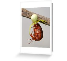 small and big Greeting Card