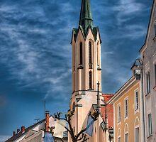 AOC in Passau by Sylvain Dumas