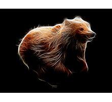 Medicine Wheel Totem Animals by Liane Pinel- Brown Bear Photographic Print