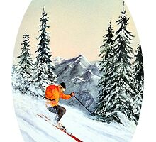 Let's Go Skiing - Banner by bill holkham