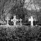 Cross My Heart, Hope To Die by Eric Scott Birdwhistell
