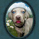 Pretty Poochie Portrait by Elizabeth Burton