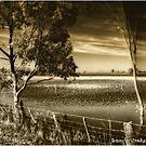 Flooded paddocks @ Warracknabeal by Jennifer Craker