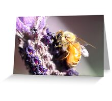 Bee Up Close Greeting Card