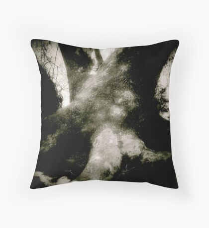 Solid Ground at Sheep's Crossing Throw Pillow