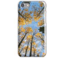 Colorful trees and sky iPhone Case/Skin