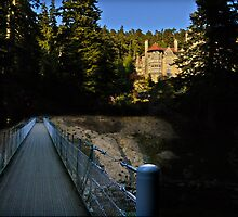 Cragside house Cragside Northumberland in colour by AdamNaisbitt