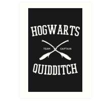 Hogwarts Quidditch Art Print