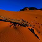 Carlo Sandblow. Rainbow Beach, Queensland, Australia (2) by Ralph de Zilva
