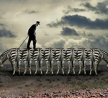 Zebra Crossing by designerpeteuk