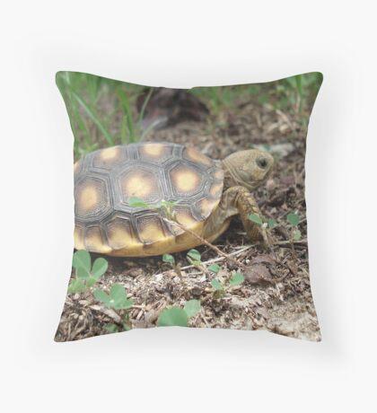 GOPHER TORTOISE HATCHLING Throw Pillow