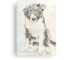 Puppy boy Indy Canvas Print