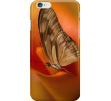 Brown Butterfly on Calia flower iPhone Case/Skin