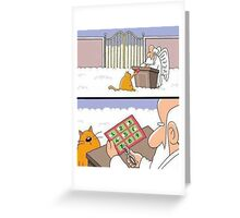 9 lives Greeting Card