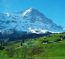Refreshing Swiss Alps by Jennifer Lam