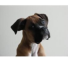 coopers ear Photographic Print