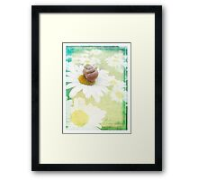 Summer hint Framed Print