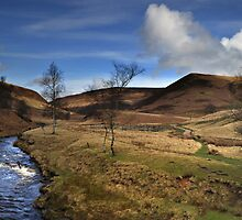 Derwent Valley by cameraimagery