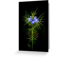 Love In A Mist Fractilous Style Greeting Card