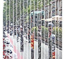 P1420950-P1420966 _GIMP Photographic Print