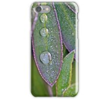 Leaves and Water Drops Macro Photograph iPhone Case/Skin