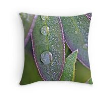 Leaves and Water Drops Macro Photograph Throw Pillow