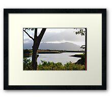 Dole Plantation Framed Print